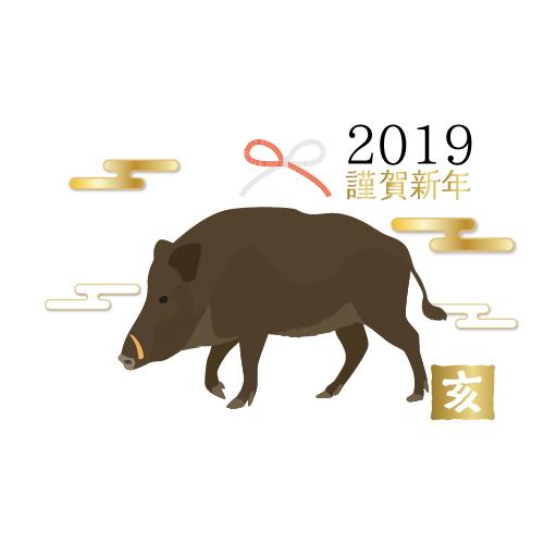 2019♪明けましておめでとうございます♪