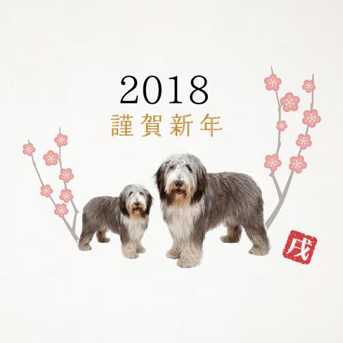 2018あけましておめでとうございます♪